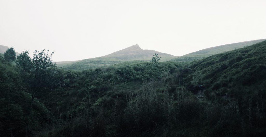 Image for Ancestors